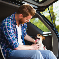 A man and his dog sit in their new car.